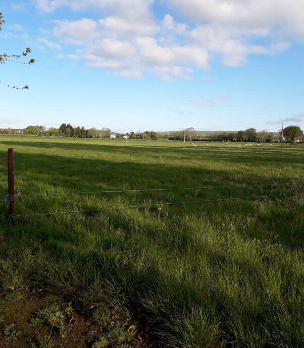 Munster Agricultural Society Flood Risk Assessment