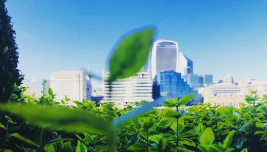 COP26: Green finance
